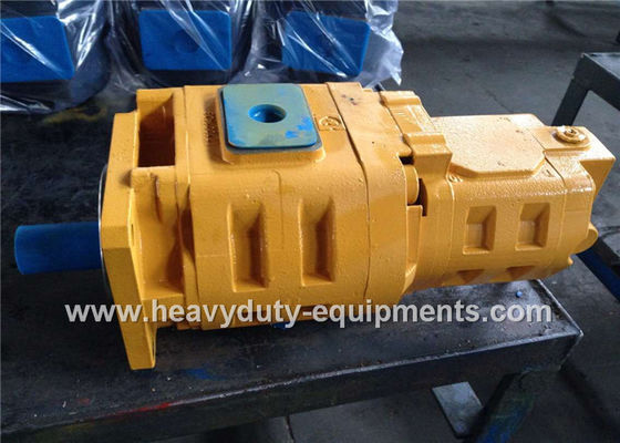 الصين Hydraulic gear pump 1010000007 for Zoomlion crane with warranty مصنع