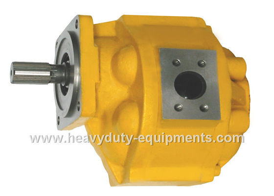 الصين Hydraulic oil pump 1010000019 for Zoomlion crane with warranty مصنع